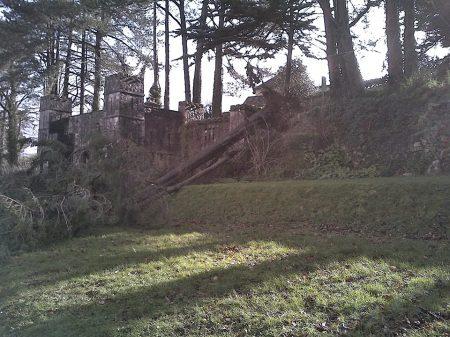 Feb2014_storm_tree_down